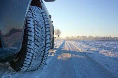 Typische Winterschäden